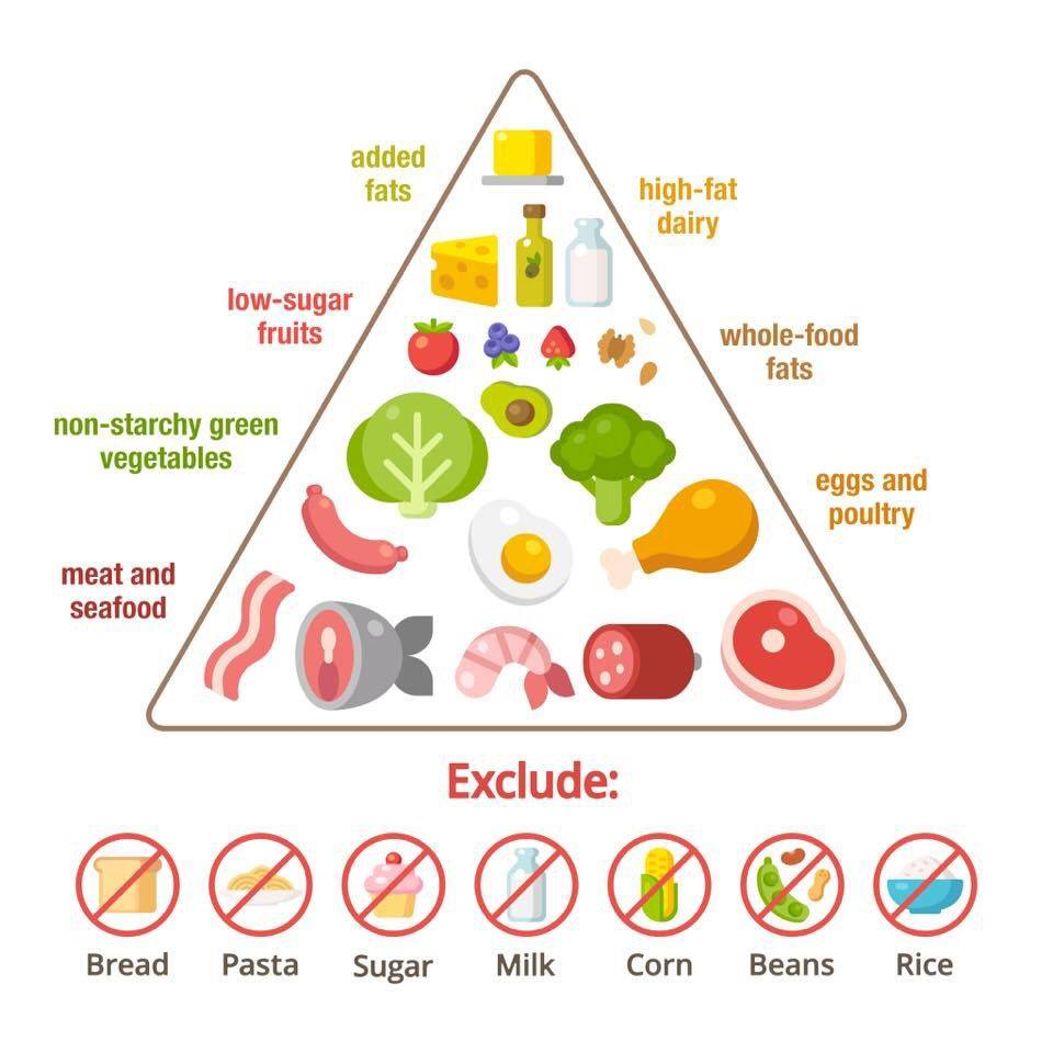 picture regarding Keto Food Pyramid Printable named 1 web page keto: every little thing your self will need towards recognize more than the